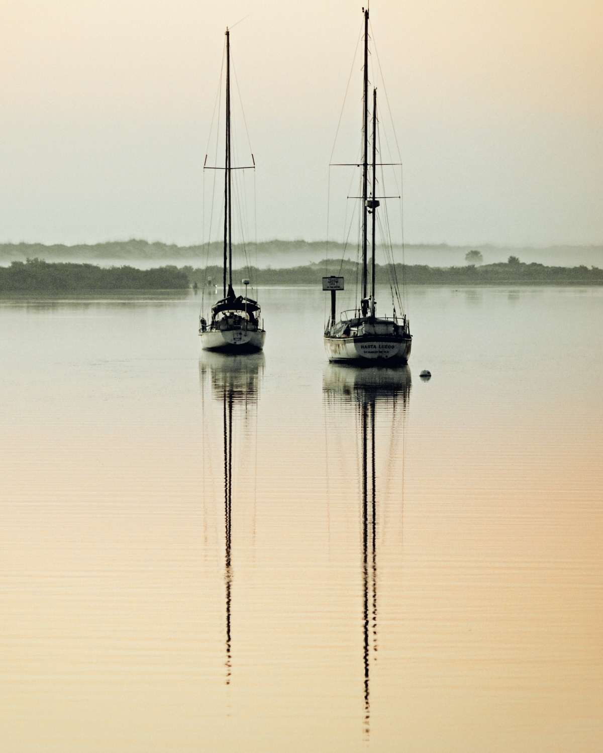 Sailboats Dream